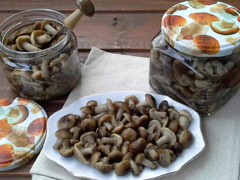Как закрутить грибы опята на зиму